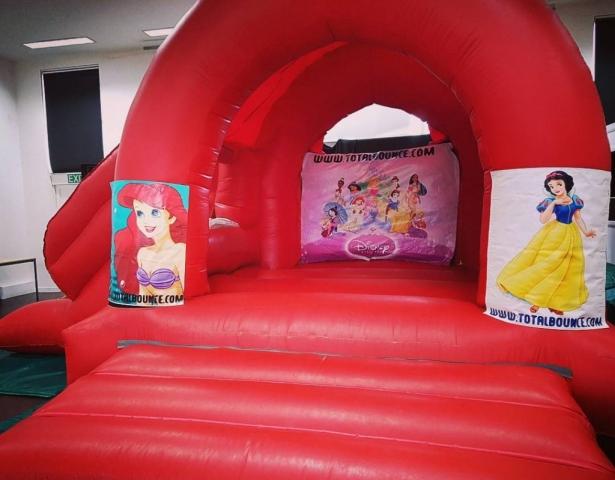 Big Princess Bouncy Castle