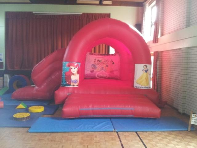 Princess Bouncy Castle with Slide Hire